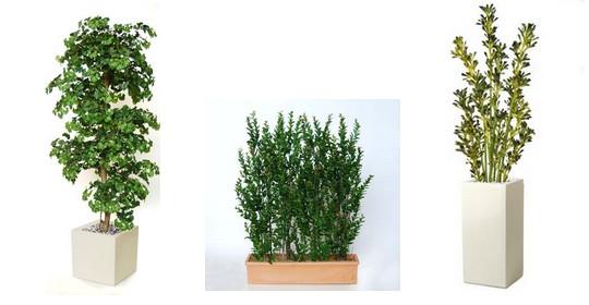 umele rostliny
