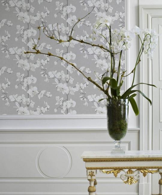 seda tapeta s bilou orchideí