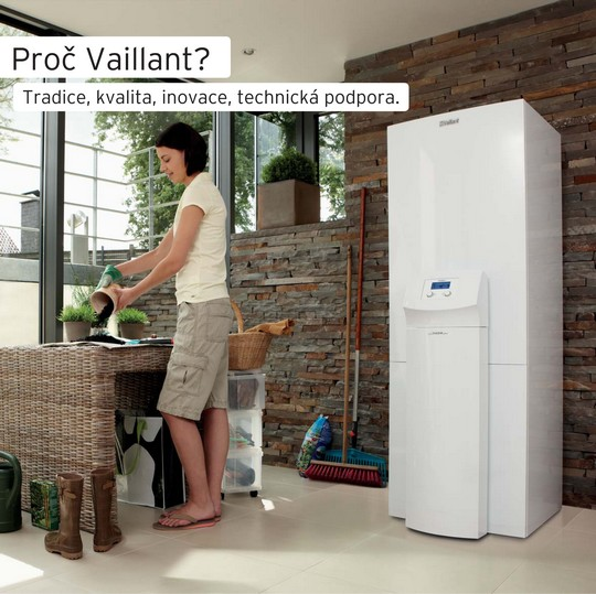 Proc Vaillant?